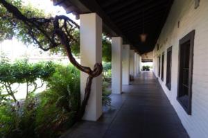 University of Santa Clara
